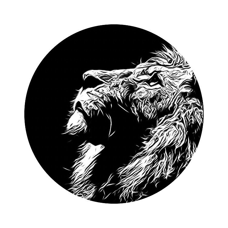 Lion  by ReedPieper