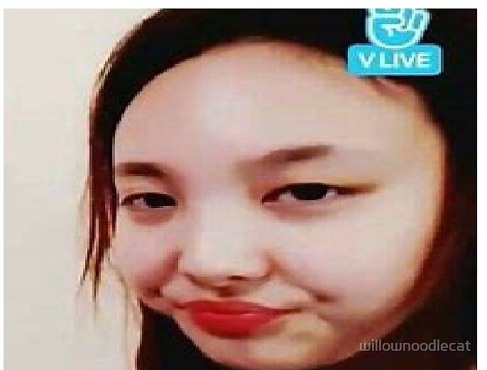 twice meme face by willownoodlecat