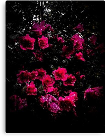 Flowering Sorrow by Mfoxdesigns