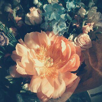 Peach Petals by FakeFate