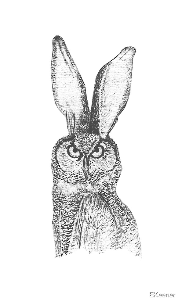 Combinations #1: Owl-Rabbit by EKeener