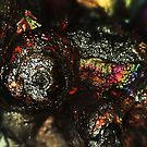 Chameleon's Eye (Goethite) by Stephanie Bateman-Graham