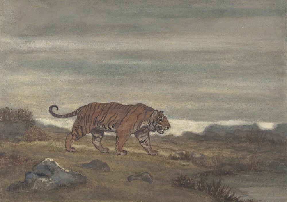 Vintage Illustration of a Striped Tiger (1875) by BravuraMedia