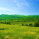 Tennessee Heaven by dmark3