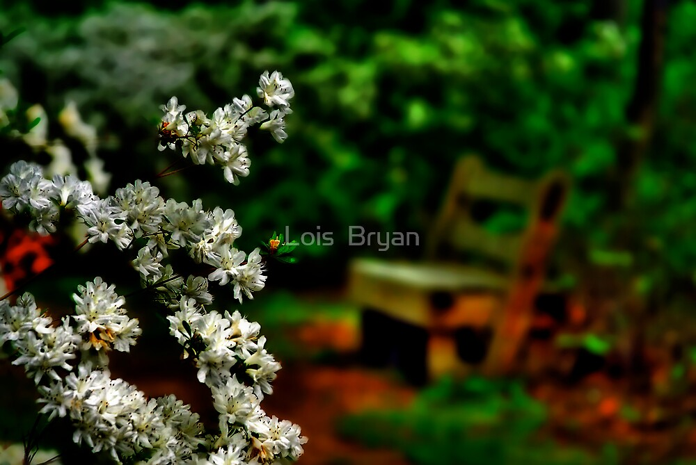 Rest Awhile by Lois  Bryan