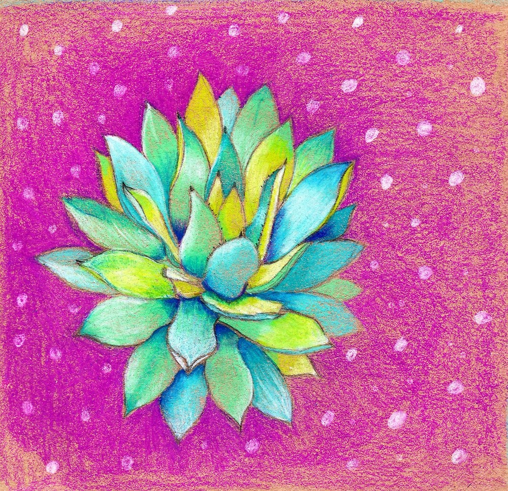 Whimsical Succulent by Carolina  Coto