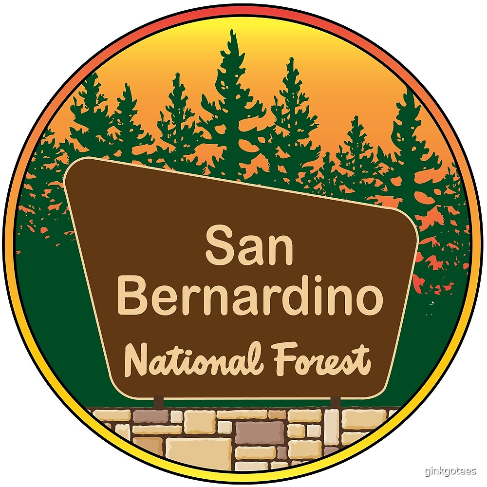 San Bernardino National Forest by ginkgotees