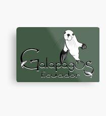 Galapagos Ecuador Sea Lion  Metal Print