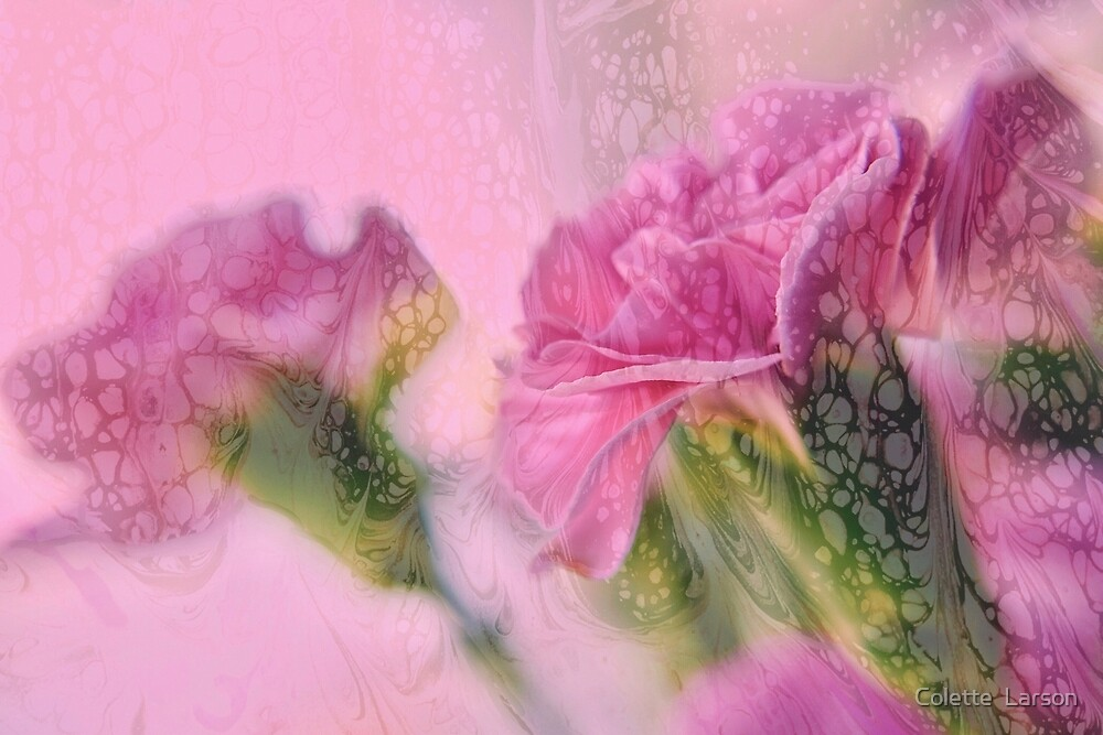 """""""Blushing Blooms"""" by Colette  Larson"""