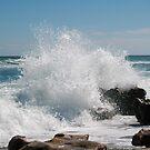 The Big Splash by Donna Adamski