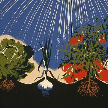 Vintage Vegetable Garden Illustration (1943) by BravuraMedia