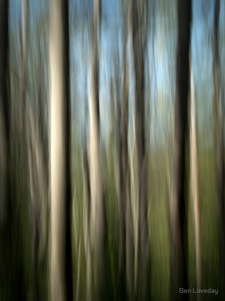 Tall Timber by Ben Loveday