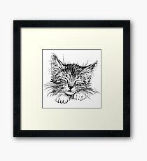 Cat animal Framed Print