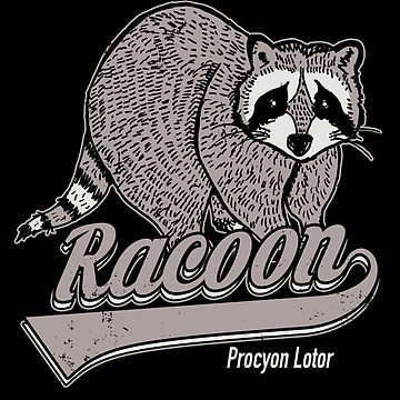 Racoon by absolemstudio