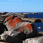 Boulders At Bicheno by Margaret Stevens