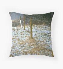 The snow fence Throw Pillow