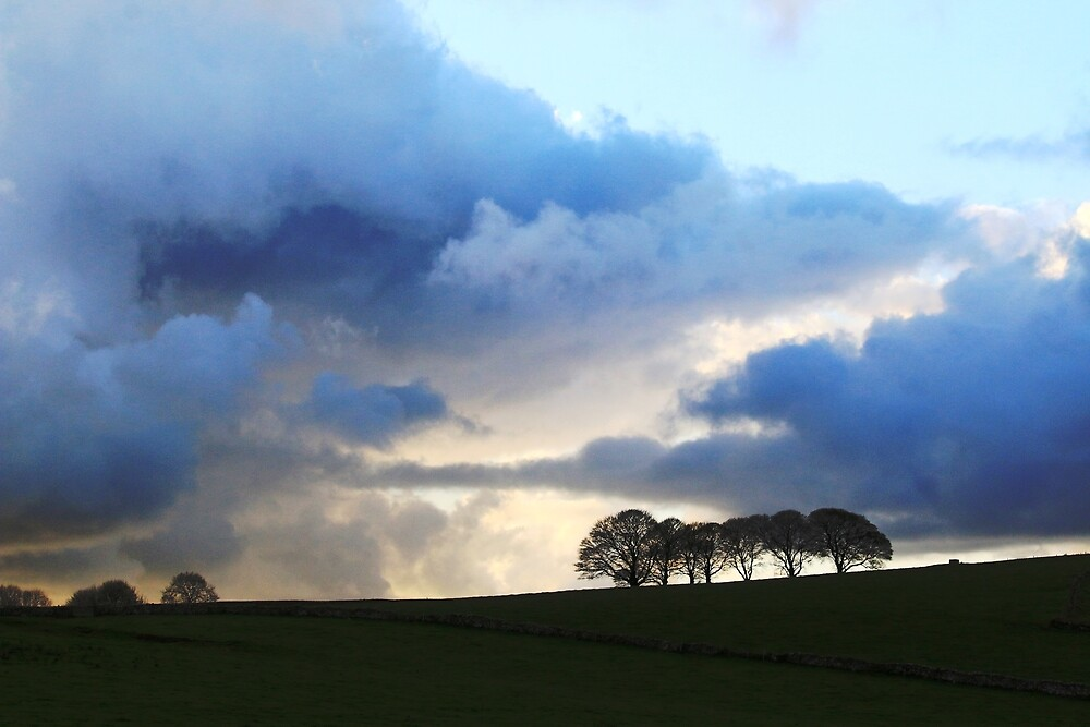 Dovedale Landscapes 1 by Adrian S. Lock