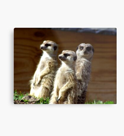 The Three Of Us Metal Print