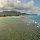 Aerial view of idyllic emerald tropical sea and beach by Lukasz Szczepanski