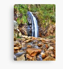 Waterfall Gully | Adelaide Hill's Canvas Print