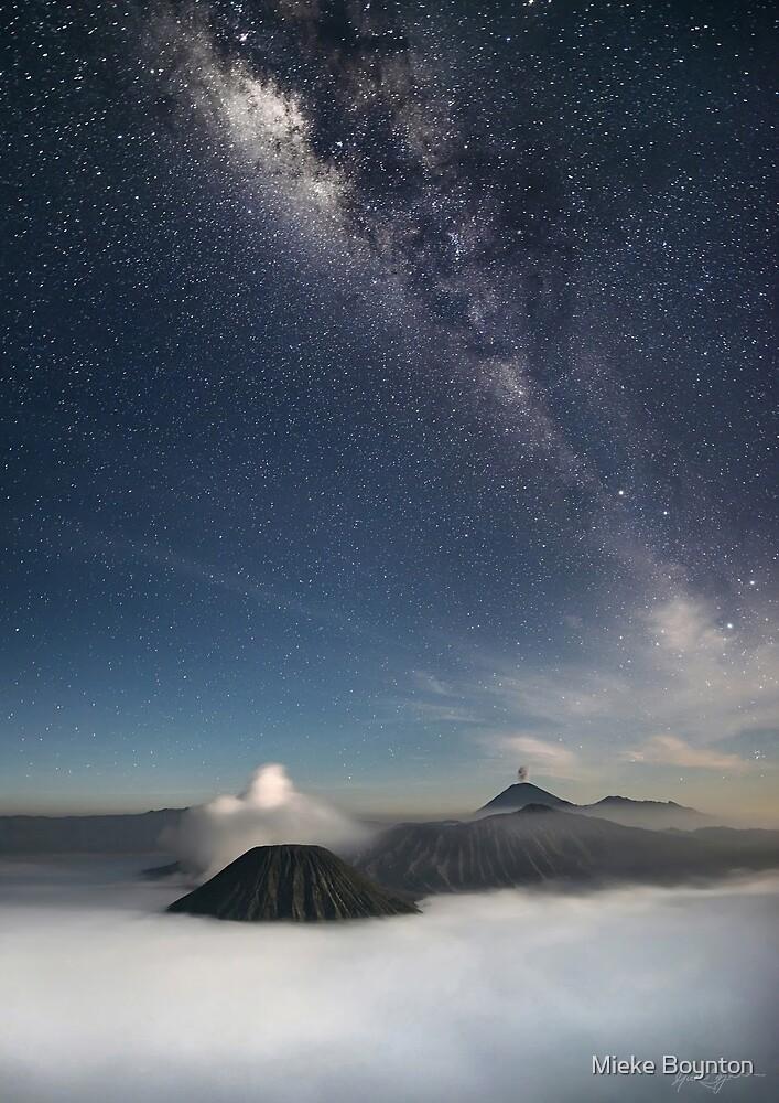 Under the Milky Way by Mieke Boynton