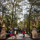 Pastry Sellers in Rittenhouse Square by Wonuola Lawal