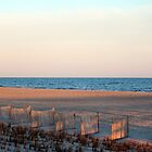 Sunlight On The Beach by Cynthia48