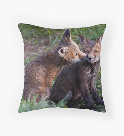 Fox Kits Drenched and Nuzzling Throw Pillow