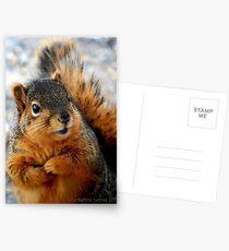 Beggar Postcards