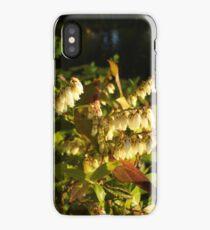 HIGH BUSH BLUEBERRY iPhone Case