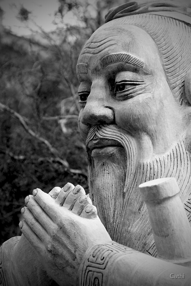 Confucius by Cathi Norman