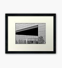 ENTRY Framed Print
