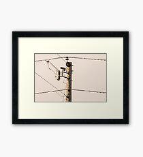 Wired Framed Print
