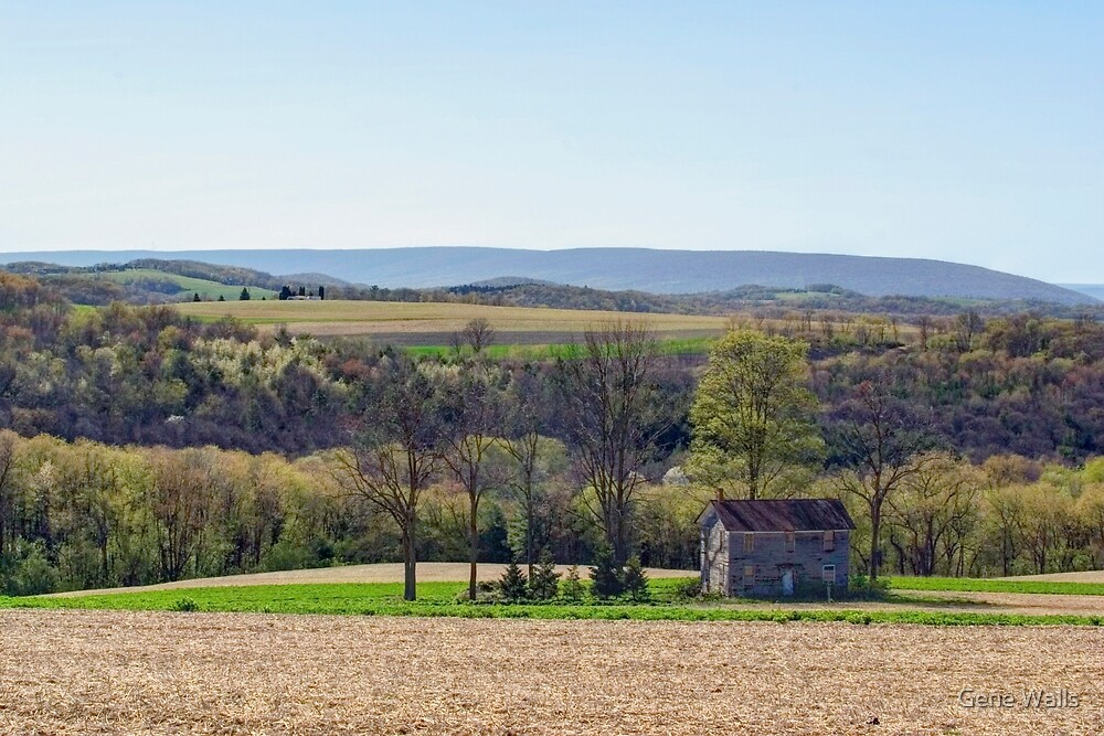 April Afternoon At The Farmhouse by Gene Walls