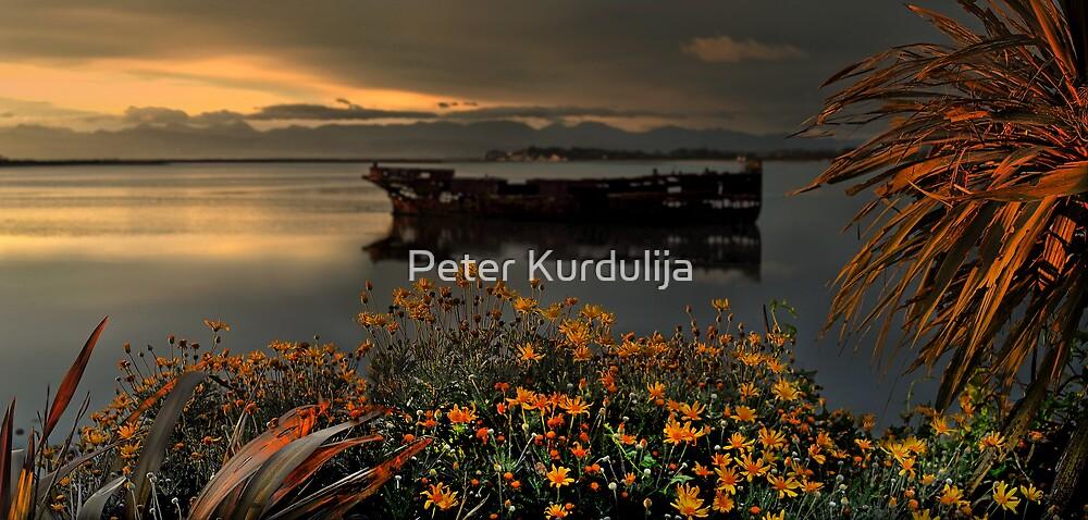 Janie Seddon by Peter Kurdulija