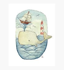 Cute Whale in the Sea Photographic Print