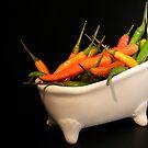 Hotties in a tub... by Yool