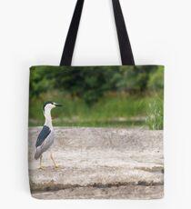 A Black-crowned Night Heron 1 Tote Bag
