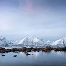 Land of Snow and Ice by Mieke Boynton
