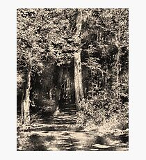 Woodcut Photographic Print