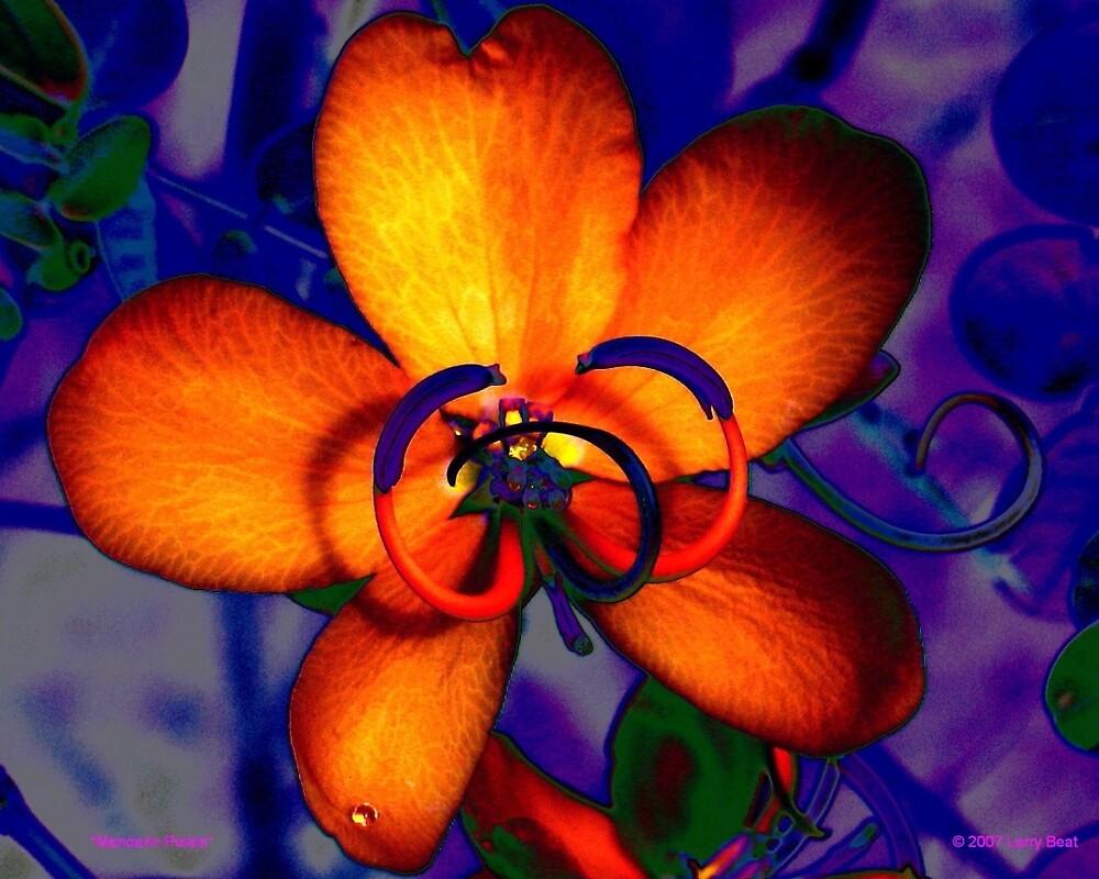 Mandarin Petals by Larry Beat