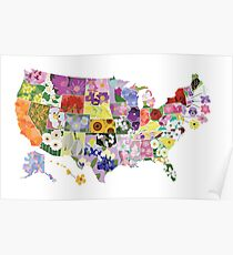 State Flower Map Poster