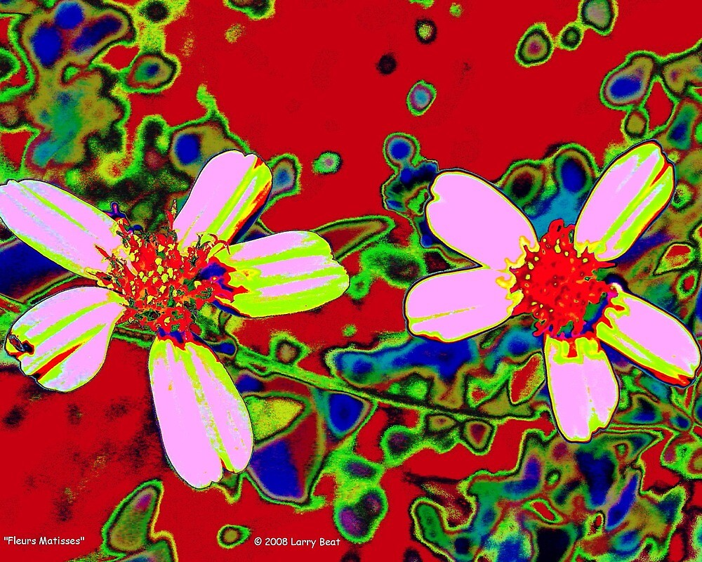 Fleurs Matisses by Larry Beat