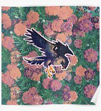 perennial falcon Poster