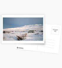 Snowbound Postcards