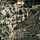 Icy Green by Paul Clarke