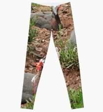 Guinea Fowl Leggings