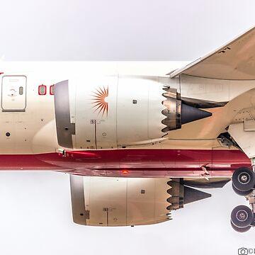 AIR INDIA B787 by robertbiraus