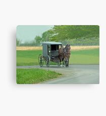 Country Ride Metal Print