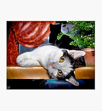This Is Wee Little Winnie! Photographic Print